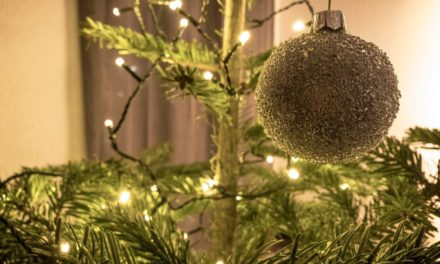 Advent, Advent, ein Lichtlein brennt…