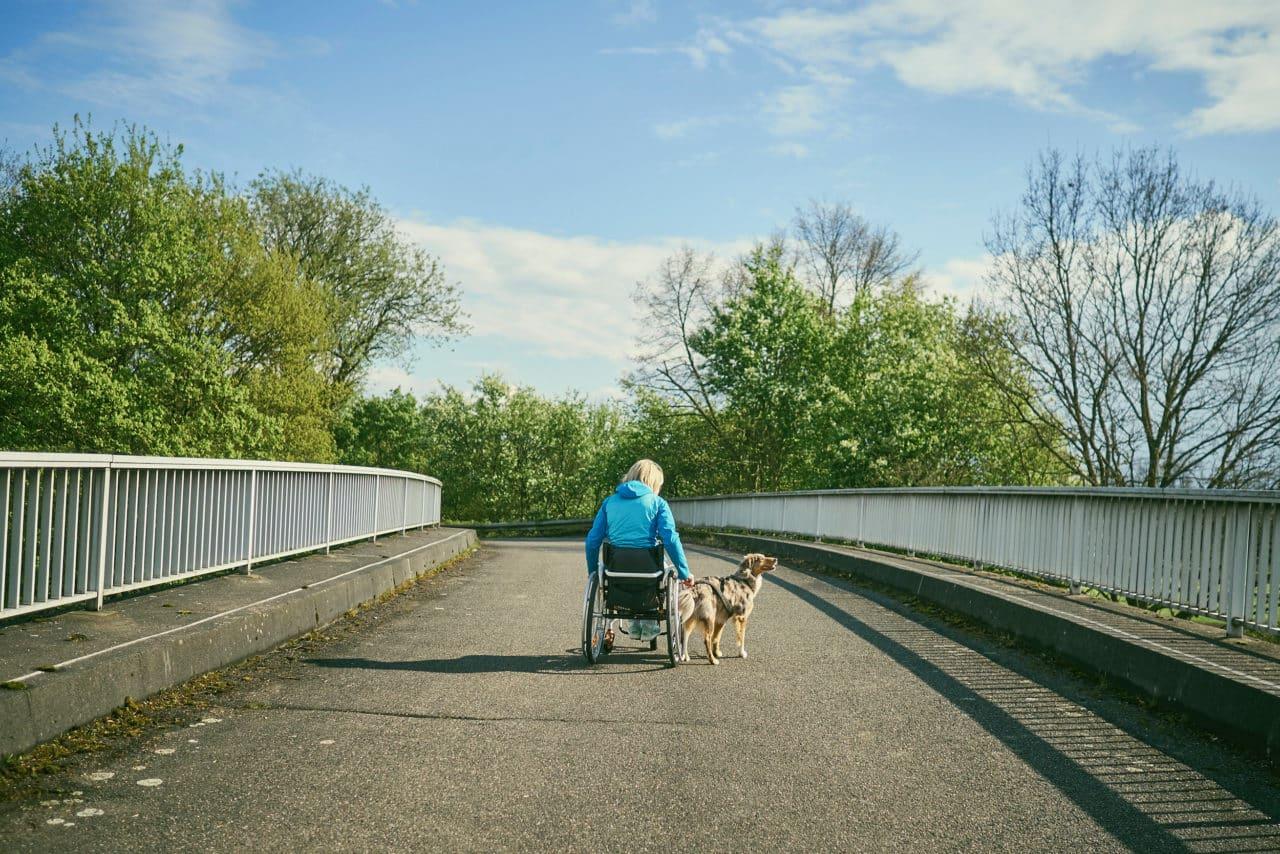 © Th10. Leben. Rollstuhl. Hund.